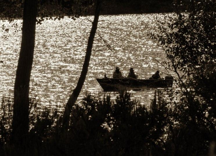 fishing at dusk.Crawford St Pk