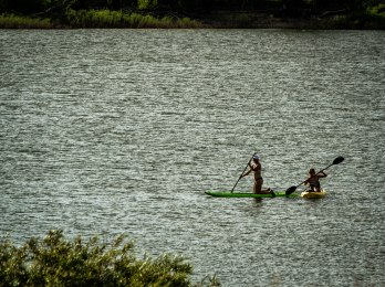 kayak and board.Crawford St Pk