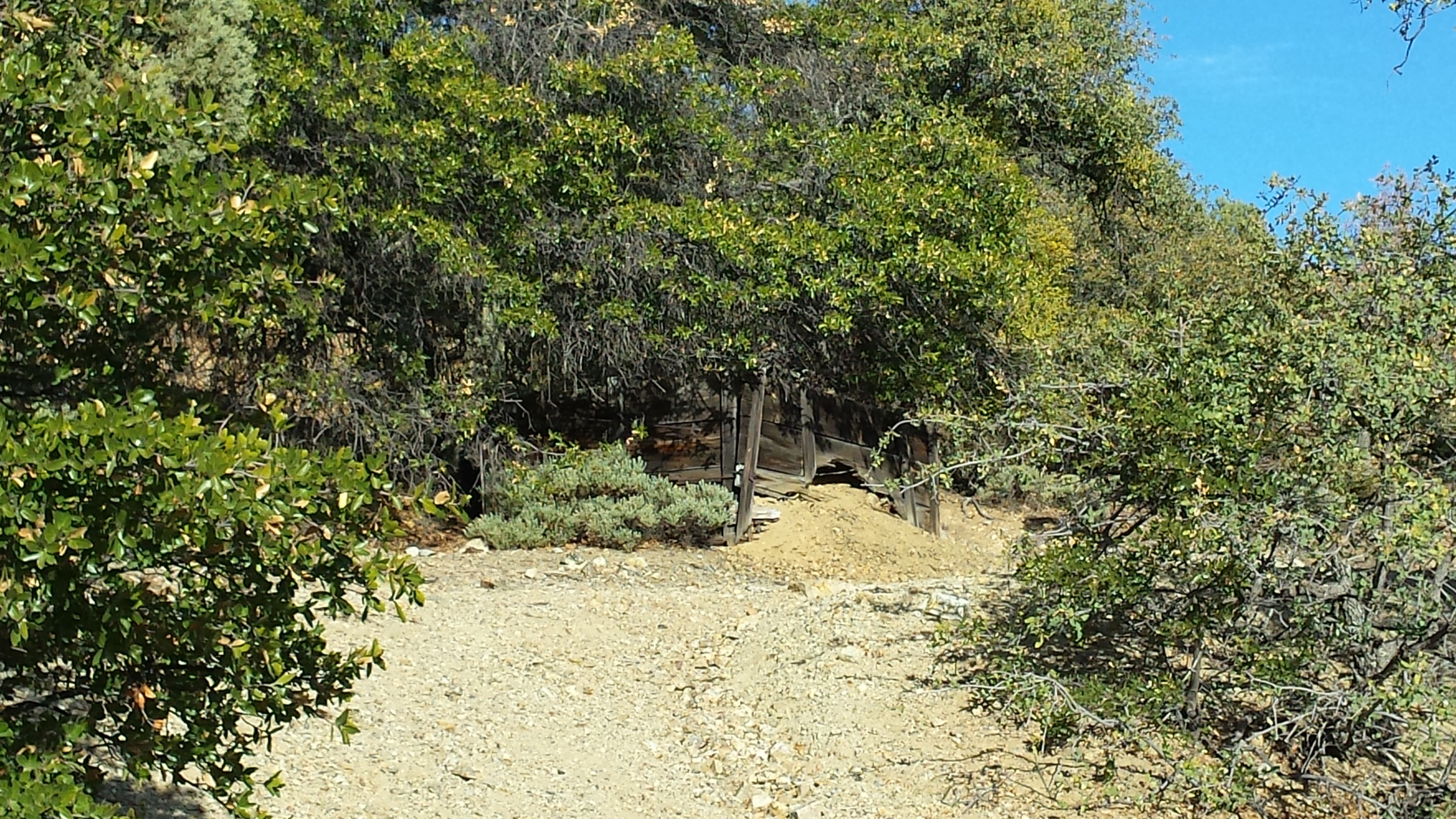 old mine on CD Trail