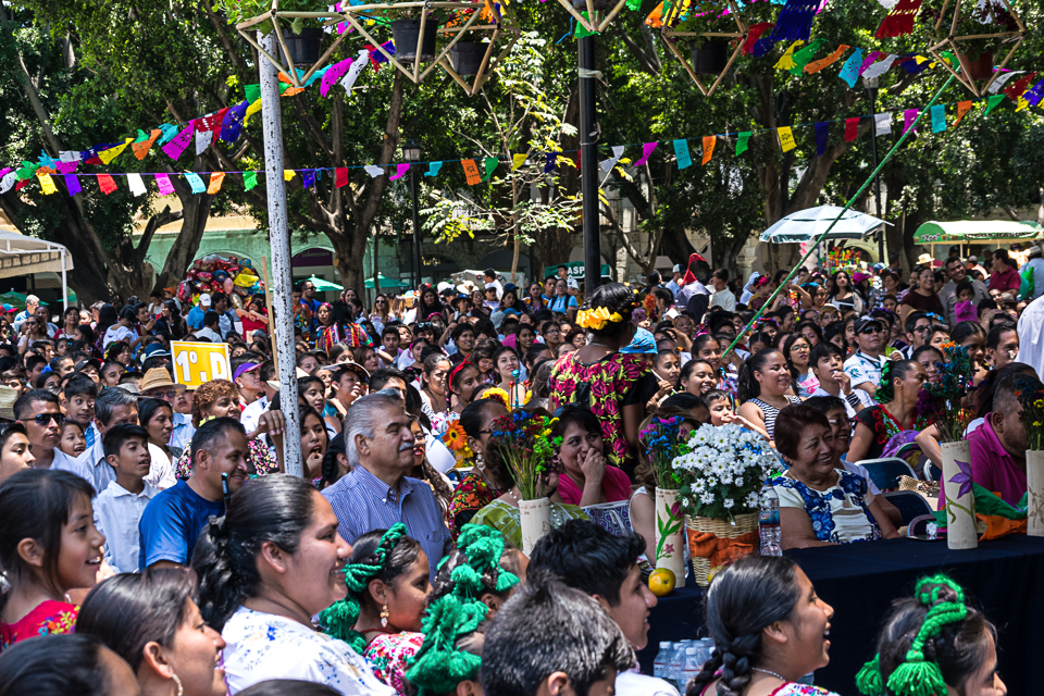 Oaxaca Celebration