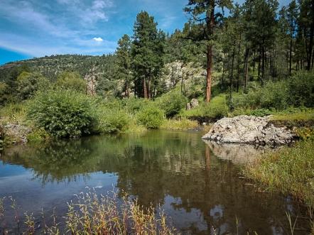 Beaver Pond on the Gila.ed
