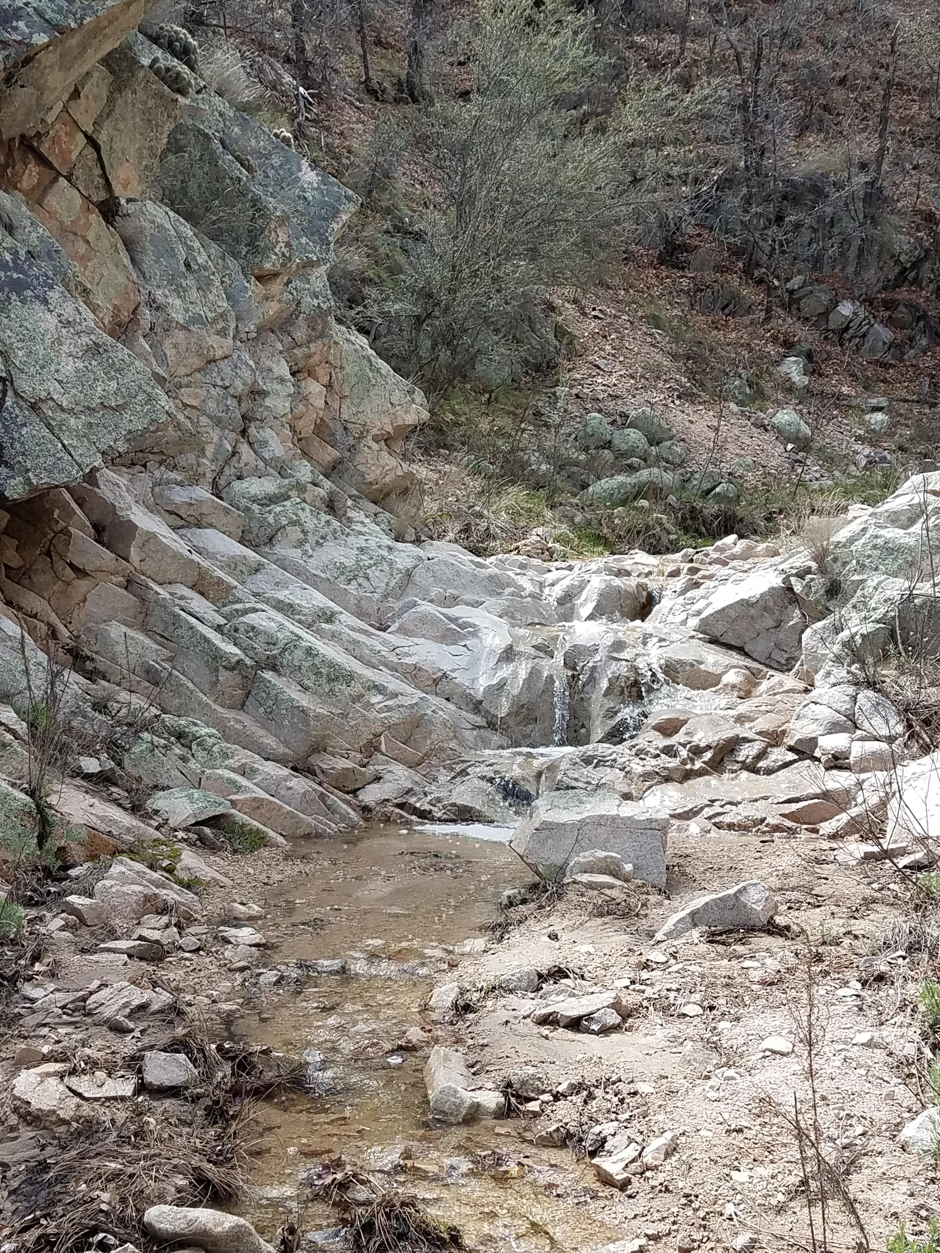 Dead Man's Canyon.2.3-28-20